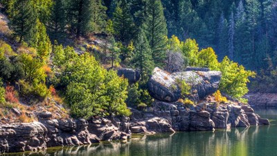 9 National Forests to Explore While Socially Distancing This Summer