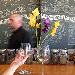 <p>Part of the Urban Wine Trail, The Valley Project is located in the heart of Santa Barbara's Funk Zone. // © 2015 Melissa Karlin</p><p>Feature image...