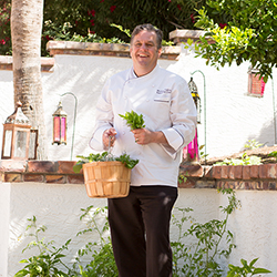 <p>Chef Michael Cairns gathering produce from Omni Scottsdale Resort & Spa's herb garden // © 2015 Omni Scottsdale Resort & Spa at...