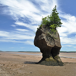 The oddly shaped Hopewell Rocks are one of the highlights of Collette's Martimes Coastal Wonders trip. // © 2014  Thinkstock