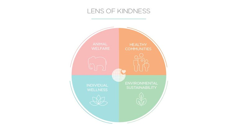 LensOfKindness_graphic