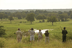On a game walk in Zambia's South Luangwa National Park // (c) Abercrombie & Kent