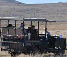 A game drive at Samara game reserve // © 2011 South African Tourism