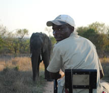 An elephant sighting at Kapama Private Game Reserve // © 2011 Skye Mayring