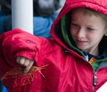 Clients can get up-close with catch on the Bering Sea Crab Fisherman's Tour. // © 2011 cbinsa