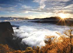 Sunrise at Alishan National Scenic Area // (c) Tourism Bureau, Ministry of Transportation & Communications, R.O.C.