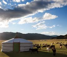 Guests on Pacific Delight Tours' eight-day Mongolia itinerary can expect exotic experiences along the way. // © 2013 Thinkstock