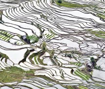 The rice terraces of Yuanyang provide intriguing visual images. // © 2012 Mark Edward Harris