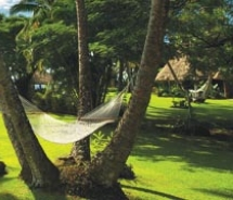 Paradise Taveuni offers 10 