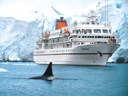 Passengers on the MS Bremen are able to get close to the action in Antarctica. // (c) Hapag-Lloyd