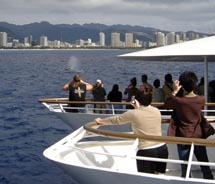Atlantis Cruises is offering a new breakfast whale watching excursion next year. // © 2010 Atlantis Cruises