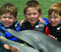 Children enjoy the Dolphin Quest Program // © 2011 Dolphin Quest