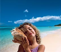 Clients can save up to $500 on airfare to Hawaii with Pleasant Holidays' Hawaii World and Distinguished Resorts brand. // © 2011 Pleasant Holidays