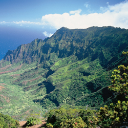 Enjoy the priceless view at Kalalau Lookout for free. // © 2013 HTA/Robert Coello
