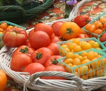 Heirloom tomatoes are just one variety of fruits and produce that clients can taste firsthand on a North Shore Farm Tour. // © 2010 North Shore Farm...