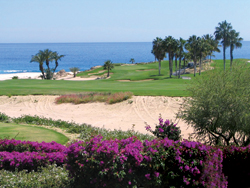 The Cabo Real Golf Club will be a part of the 6th Annual People vs. Pros Golf Tournament. // (c) Todd Mazza
