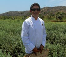 Chef Enrique Silva gathers ingredients at Huerta Los Tamarindos' organic farm. // © 2011 Deborah Dimond