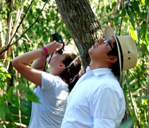 There is plenty to see at the Riviera Maya's Otoch Ma'ax Yetel Kooh nature reserve.  // © 2012 Greg Olsen
