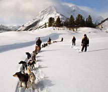 Mad Dogs & Englishmen Expeditions offer winter activities in Banff. // © 2011 Mad Dogs & Englishmen Expeditions