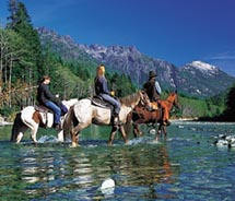 Clients can explore Alberta on horseback. // © 2011 Alberta Tourism