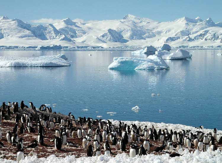 Antarctica is often the final frontier for the most well-traveled. // © 2013 Thinkstock