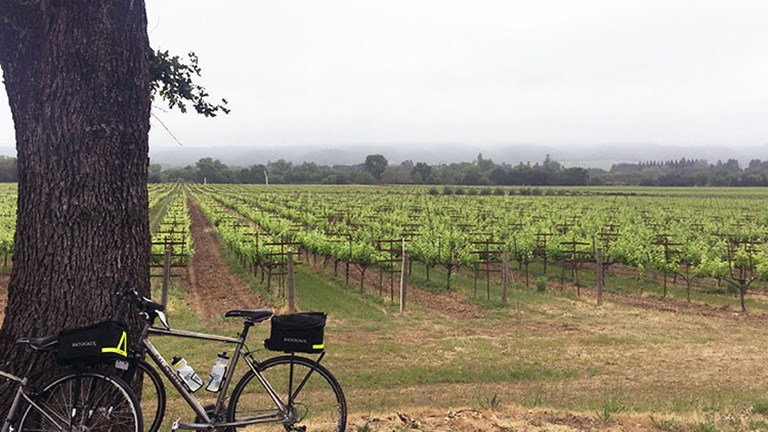 Backroads' California Wine Country cycling tour takes active clients through Napa and Sonoma. // © 2016 Valerie Chen