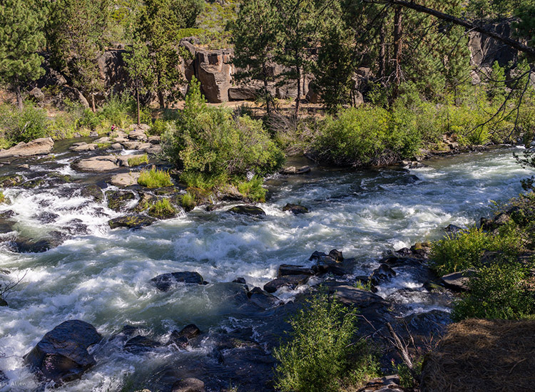 "Scenes of ""Wild"" were filmed in Bend, Ore., substituting for trails in California. // © 2014 Creative Commons user jhallen59"