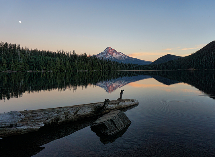 Lost Lake is one of the Mount Hood area's many alpine lakes. // © 2014 Creative Commons user roome