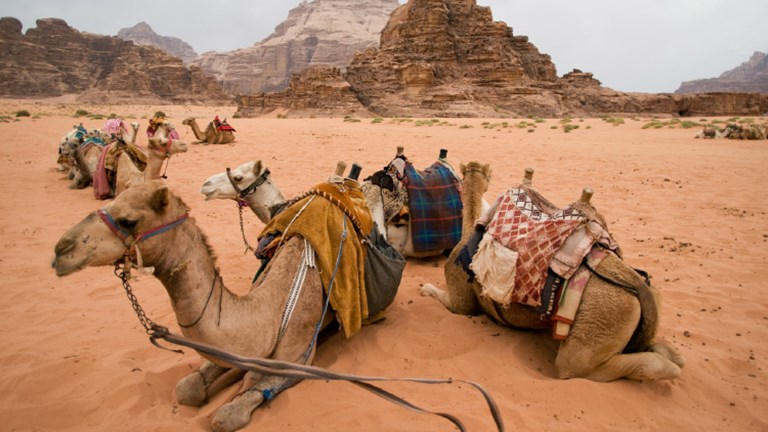 A new map for tourists helps direct visitors to community businesses, as well as to The Jordan Trail, which runs through Wadi Rum. // © 2018 Getty Images
