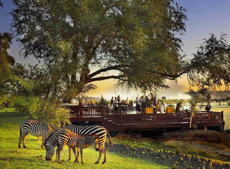 Zebras, impalas, giraffes and monkeys are common sights at The Royal Livingstone. // (c) The Royal Livingstone