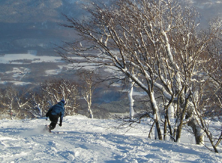 Hokkaido, Japan, is known for its powder snow and attracts skiers from around the world. // © 2016 Japan National Tourism Organization