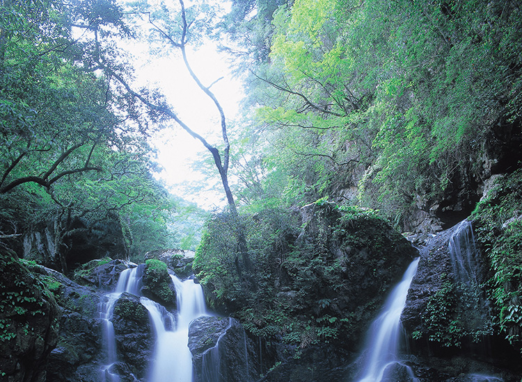"Iya Valley is known as Japan's ""Grand Canyon"" for its deep ravines and steep mountainsides. // © 2015 Tokushima Prefecture and Japan National Tourism Organization"