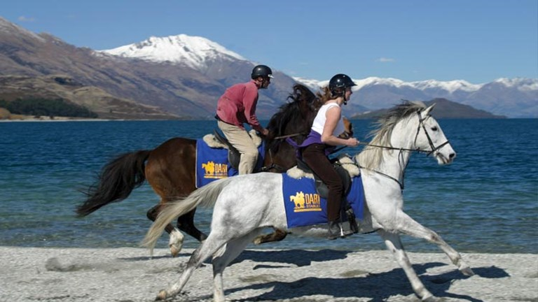 "For advanced riders only, Dart Stables' ""The Trilogy Loop"" tour offers fast-paced rides along gorgeous rivers with views of scenery from the films, including the peaks used to represent the Misty Moun"