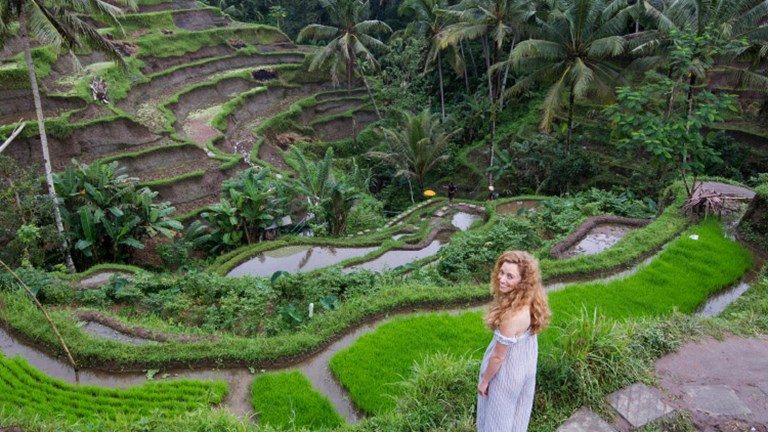 Tegallalang Rice Terrace near Ubud is a must-visit. // © 2017 Joshua Fhima
