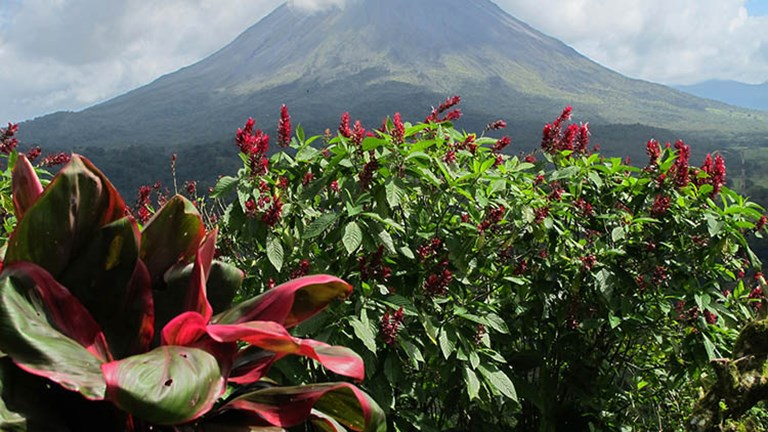 On a sunny day, you can get great views of Arenal Volcano, which rises at least 5,300 feet high. // © 2017 Janice Mucalov