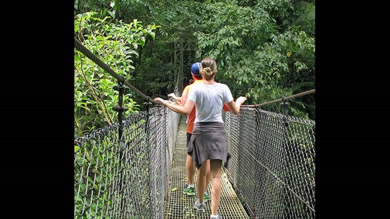 At the Mistico Arenal Hanging Bridges Park, 15 bridges allow visitors to view birds and wildlife from above the forest canopy. // © 2017 Janice Mucalov