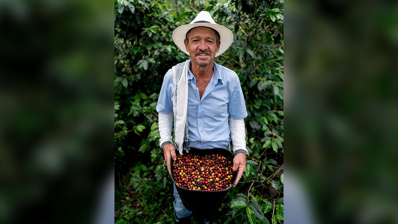 Visitors can learn where their coffee comes from during a visit to a coffee farm in Colombia.