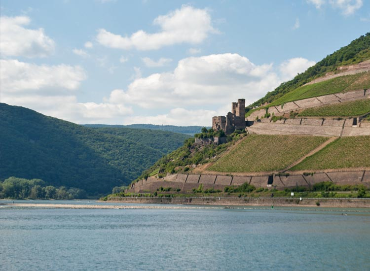 The Klopp Castle and the vineyards of Bingen set the scene for the celebration. // © 2014 Mindy Poder