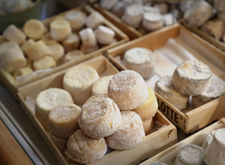 Sample goat cheese at Chevrerie la Trufiere in Macon, known for its bouton de culotte. // © 2016 Mindy Poder
