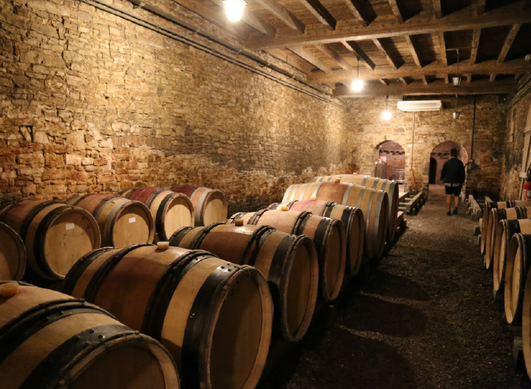 Take a trip to Beaune, Burgundy, to visit the Drouhin cellar which dates back to the 13th century. // © 2016 Mindy Poder