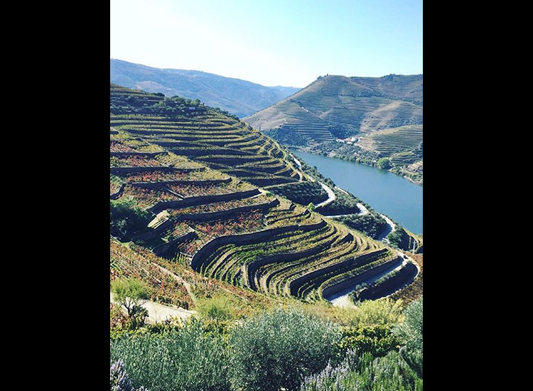 The beautiful Douro River is the top destination for Instagram users in Porto. // © 2015 Instagram user isabellevandeplassche