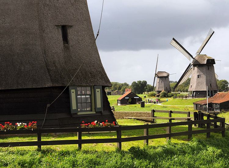 Windmills in the Holland countryside // © 2016 Toms Travel Tours