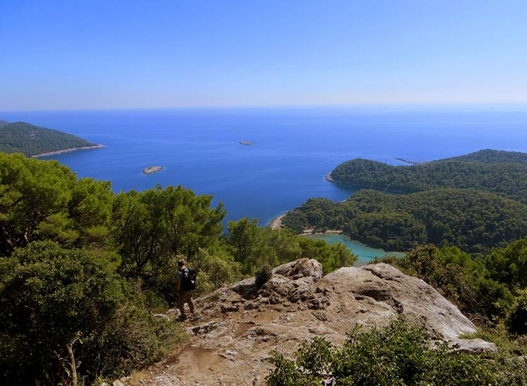 Mljet is said to be Croatia's greenest island. // © 2017 Creative Commons user carine06