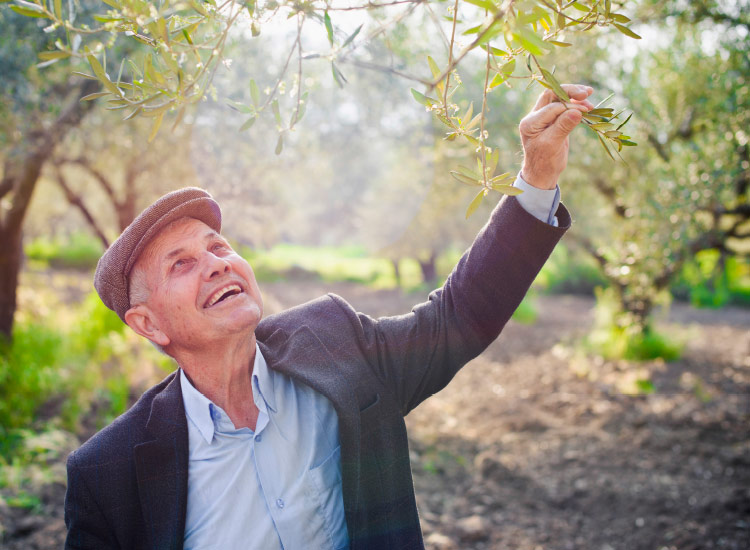 "Tour operators are increasingly focusing on ""people-to-people"" experiences for travelers, such as meeting olive farmers in Crete. // © 2016 iStock"