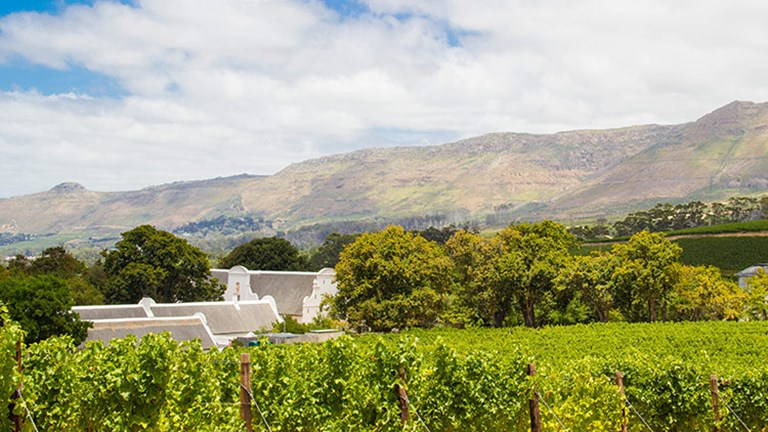 Cape Town's wine scene will soon shine even brighter thanks to the designation of Wine of Origin Cape Town. // © 2017 MarlboroughNZ.com // © 2017 Cape Town Tourism