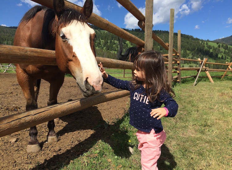 For younger guests, there's an on-site play structure and plenty of opportunities to feed and ride horses. // © 2015 Chelsee Lowe