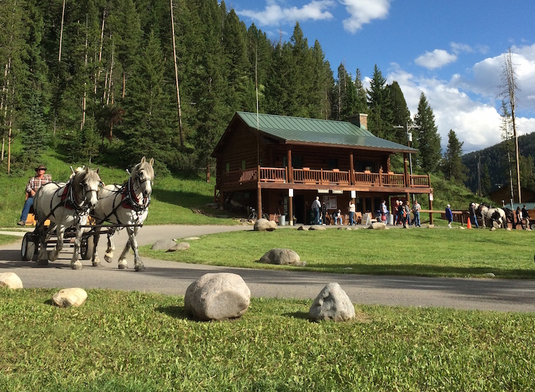 Horse-drawn wagon rides and a roping iron are among must-do activities at 320 Guest Ranch, a family-friendly property north of West Yellowstone, Mont. // © 2015 320 Guest Ranch