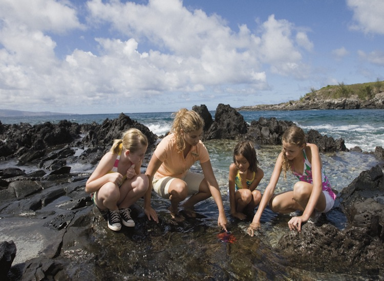 Look for sea creatures in tide pools with Ritz Kids' leaders at The Ritz-Carlton, Kapalua in Hawaii. // © 2015 The Ritz-Carlton