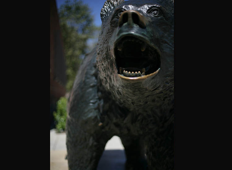 UCLA's Bruin Statue is a favorite stop for shutterbugs and the superstitious — some students rub the bear's back paw for good luck. // © 2015 UCLA