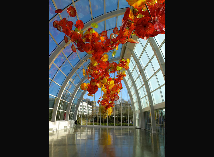 Prospective University of Washington students can explore Seattle's many sights, including Seattle Center's Chihuly Garden and Glass Museum. // © 2015 Samantha Davis Friedman